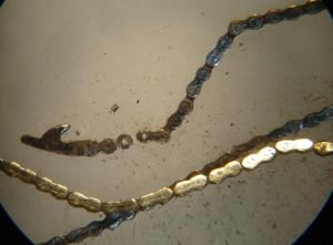 catena conoide